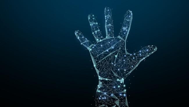 手掌3D图